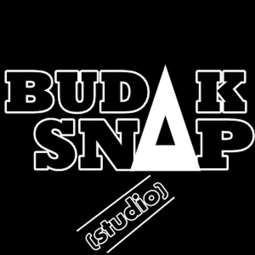 Budak Snap (studio)'s avatar