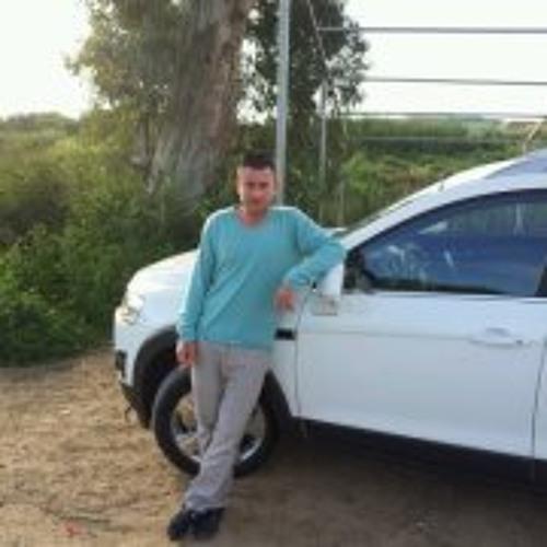 Stav Lishansky's avatar