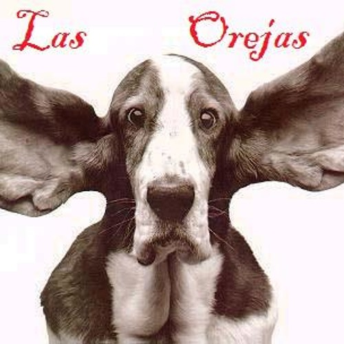 Las Orejas's avatar