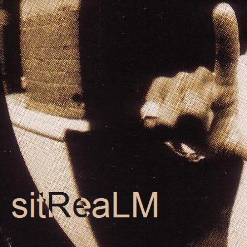 sitReaLM's avatar