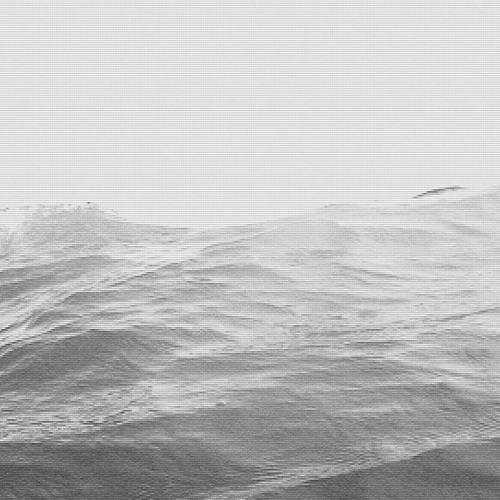 the dim coast's avatar