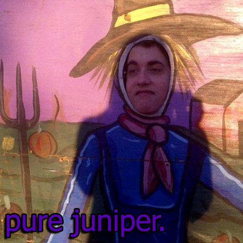 Pure Juniper's avatar