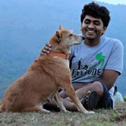 Thejas Ravish's avatar
