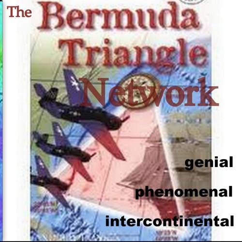 The Bermuda Tiangle Net's avatar