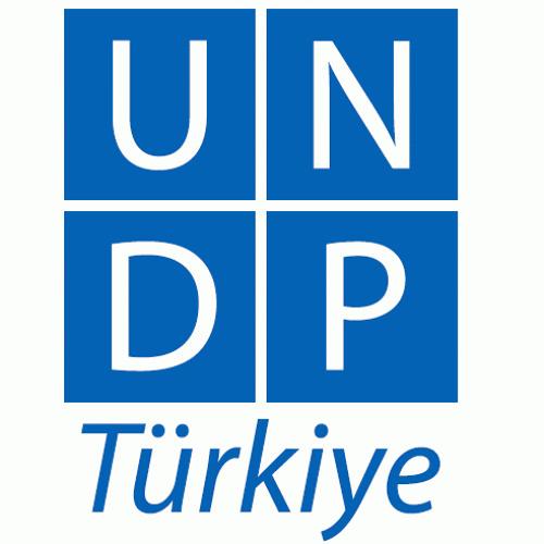 undpturkiye's avatar