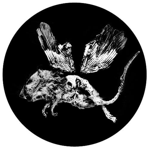 Foma's avatar