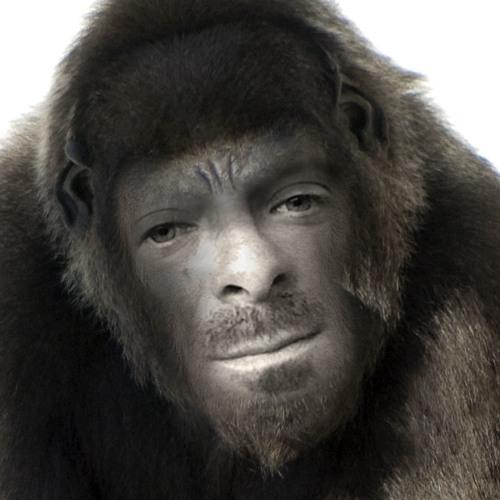 Alexoonovitch's avatar