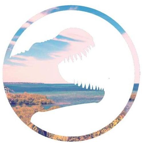 Tinzaurus's avatar
