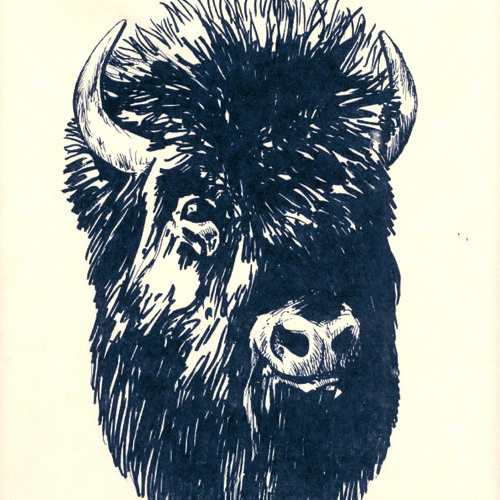 TheBisonBrothers's avatar