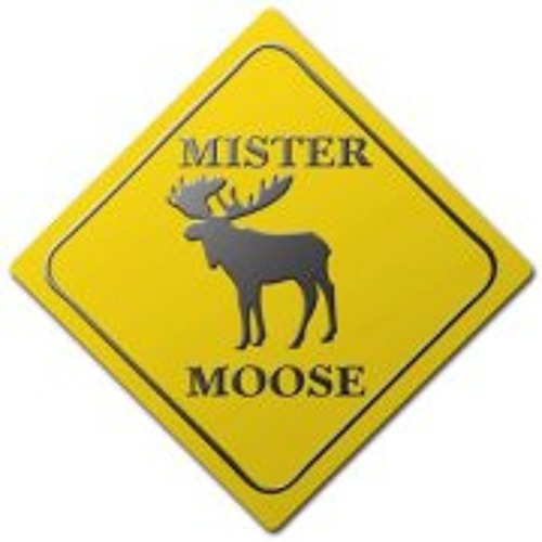 Mister Moose Music's avatar