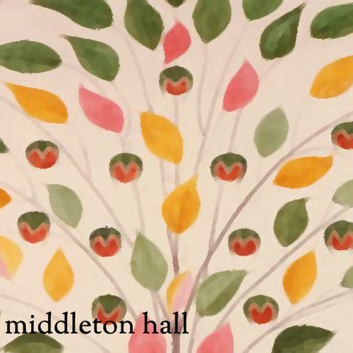 Middleton Hall's avatar