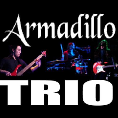 Armadillo Trio's avatar