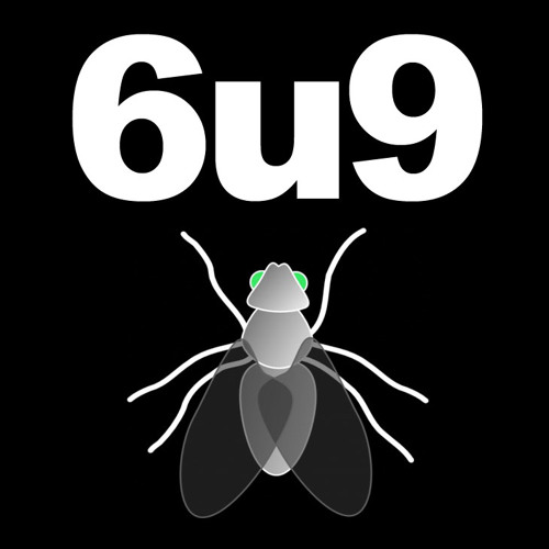 6u9's avatar