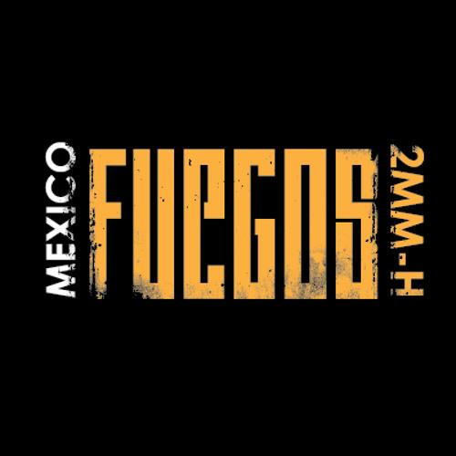 FUEGOS's avatar