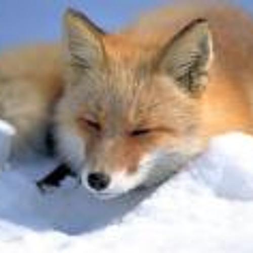 Jesus Fox Francisco's avatar
