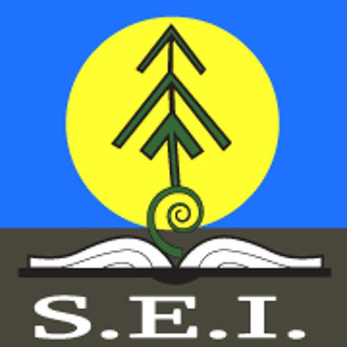 Sovereign Element's avatar