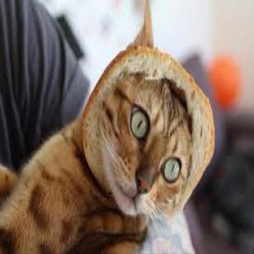 Jaypoopycats's avatar