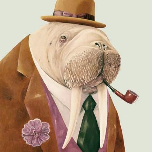 constipatedwalrus's avatar