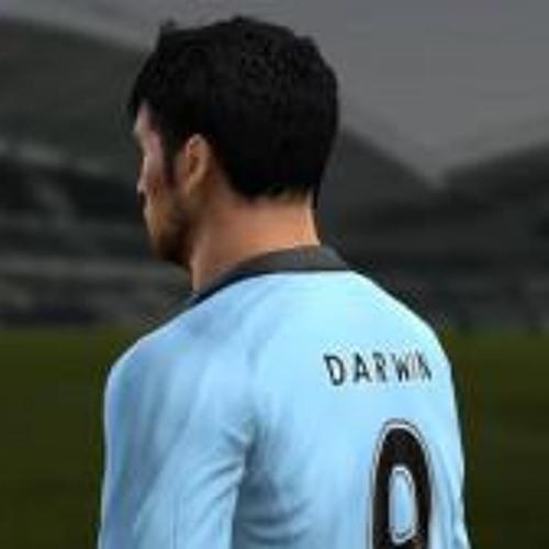 Darwin J Flores Q's avatar