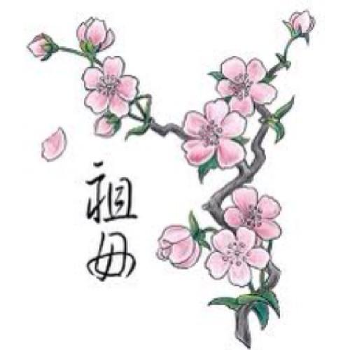 Xin wei's avatar