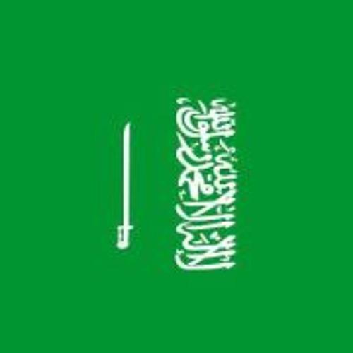 Amer Al-khaldi's avatar