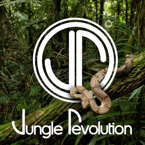 JUNGLE REVOLUTION's avatar
