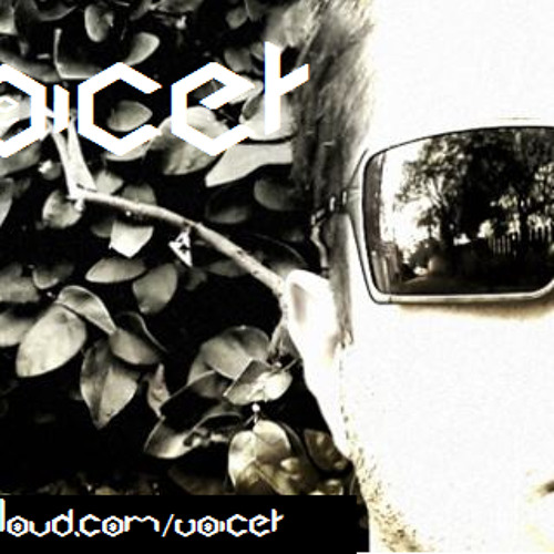 Voicer's avatar