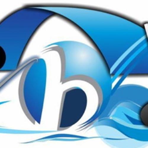 Bridgewater Pro's avatar