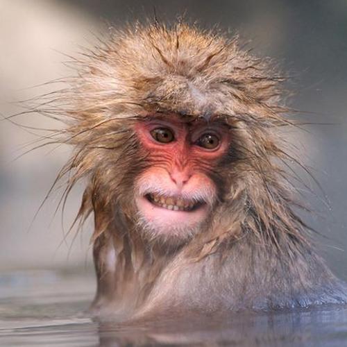 crothkop's avatar