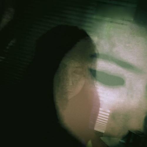 Tara Elizabeth Bruse's avatar
