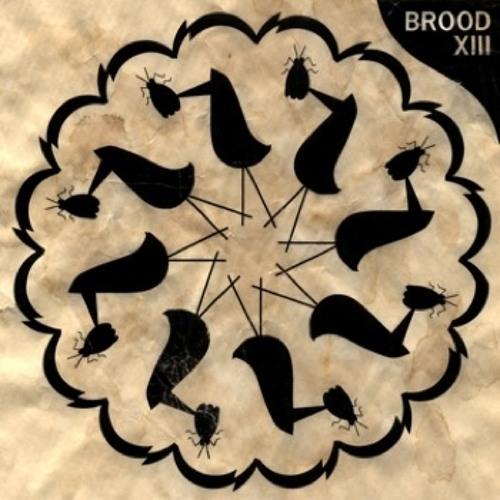 brood XIII's avatar