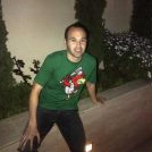 Iniesta Andrès 1's avatar