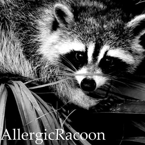 AllergicRacoon's avatar