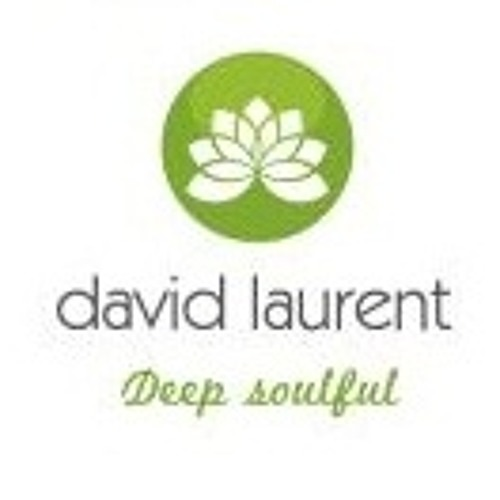 David laurent's avatar