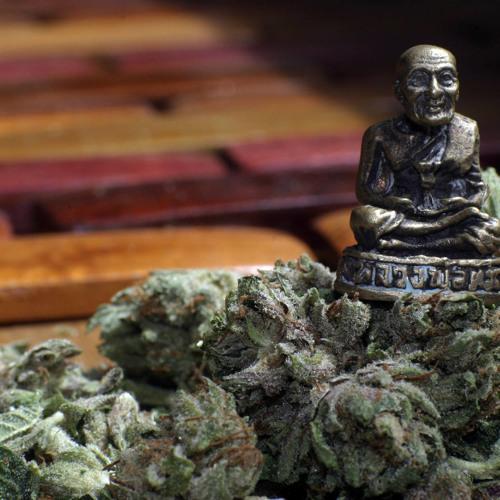 dancing buddha's avatar