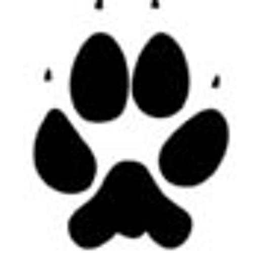 Le Coyote Gaulois's avatar