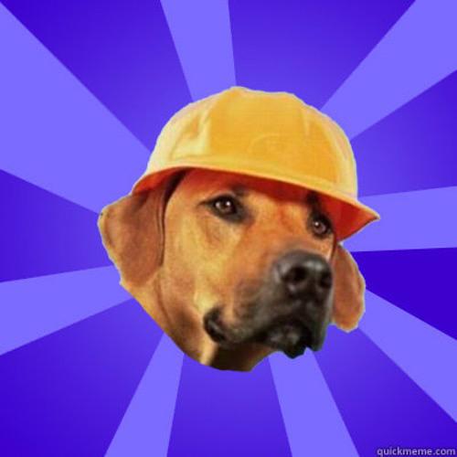 The Dog11's avatar