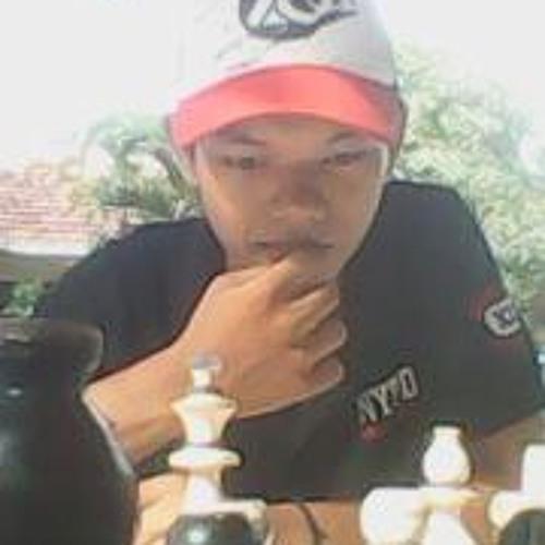 Catur Adi Sulistiyo's avatar