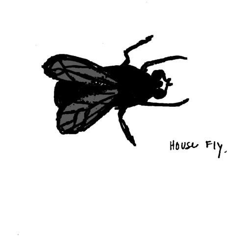 Joseph C. Higgins's avatar