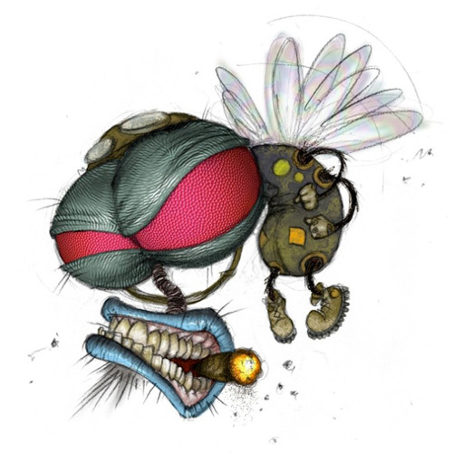 DAFLY BEATS's avatar
