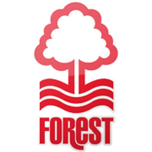 Nottingham Forest's avatar