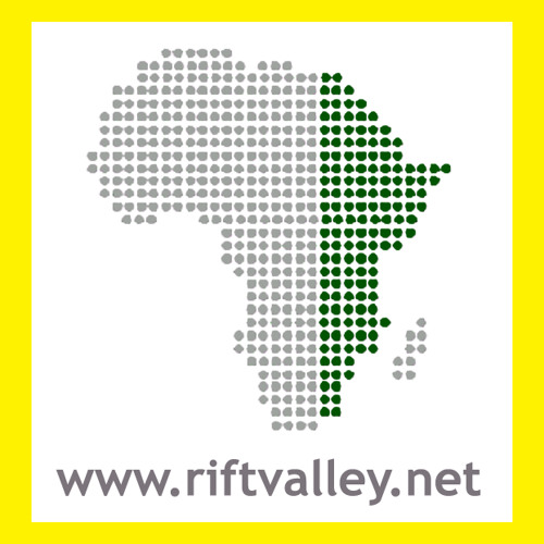 Rift Valley Institute's avatar
