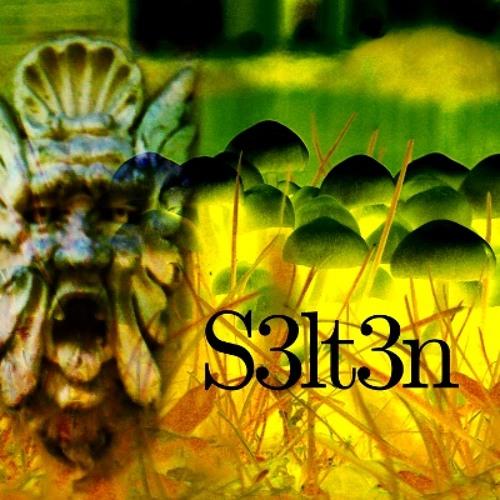 s3lt3n's avatar