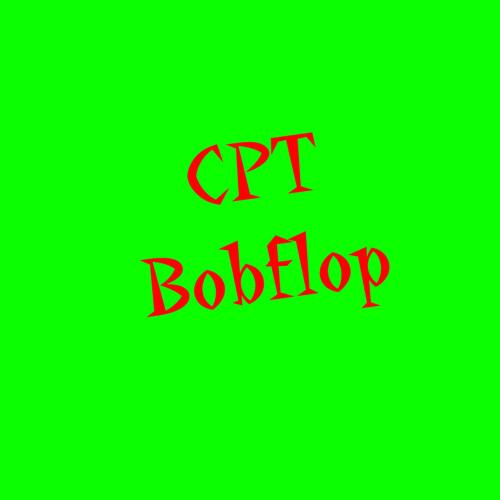 CptBobflop's avatar