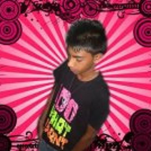 Sarvesh Laullooa's avatar