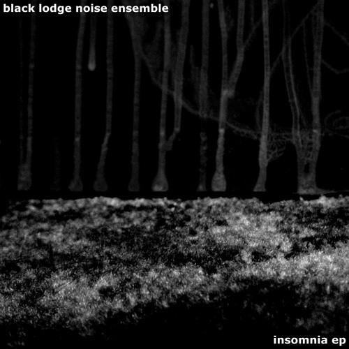 blacklodgenoiseensemble's avatar