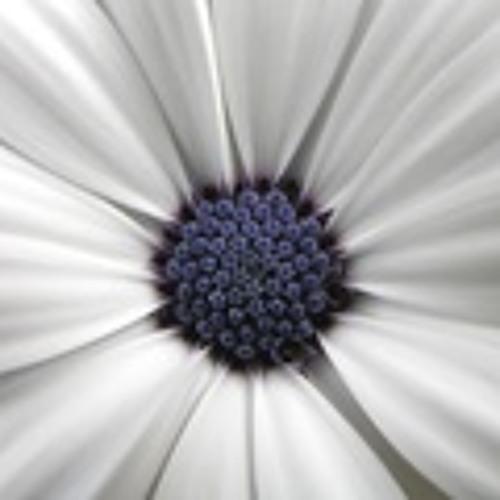 www.purpleseedsorg.com's avatar