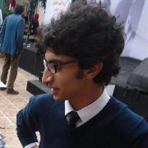 Mahmoud Osama Elmaghraby's avatar