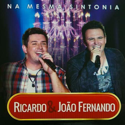 Ricardo e João Fernando's avatar