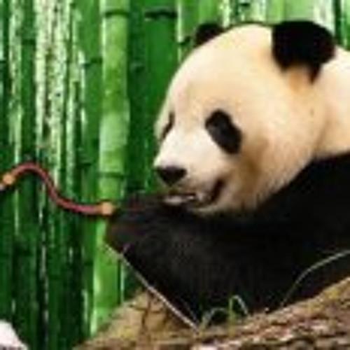 Vincentius Panda Bebel's avatar